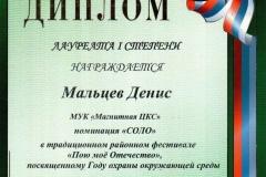 Пою моё отечество, ДМ, 2013