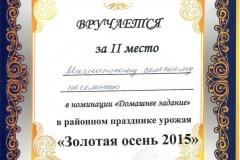 Золотая осень 2015 МСП (домашнее задание)