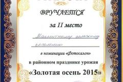 Золотая осень 2015 МСП (фотосалон)