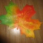 Мисс Золотая Осень.